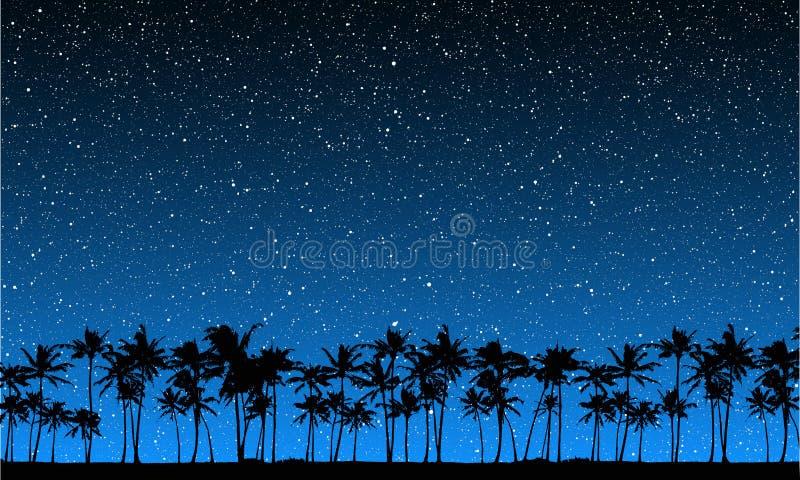 Estrelas atrás das palmas ilustração stock