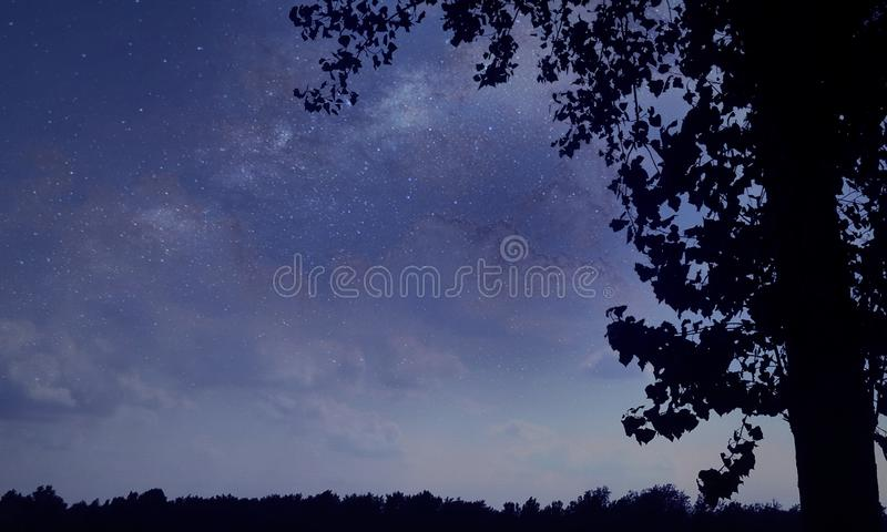 Estrelas brilhantes imagens de stock royalty free