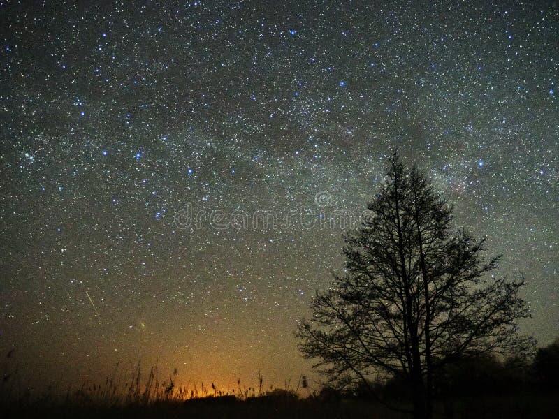 Estrelas do céu noturno e da Via Látea, meteoro Cassiopea e de constelação do Cygnus pântano fotografia de stock
