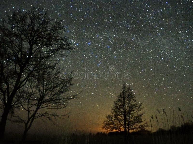 Estrelas do c?u noturno e da Via L?tea, Perseus, Cassiopeia sobre o campo foto de stock