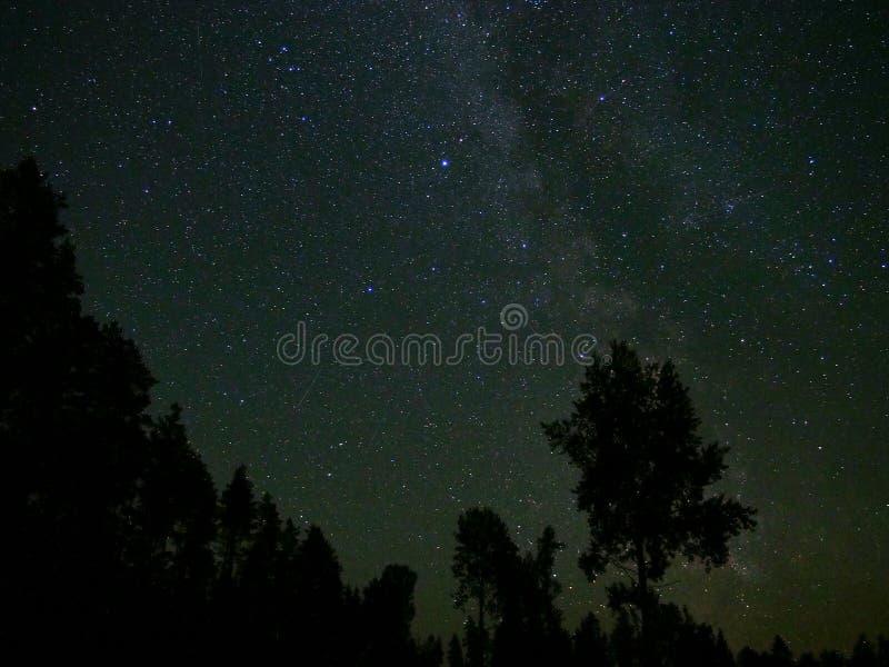 Estrelas e Via Látea do céu noturno foto de stock royalty free