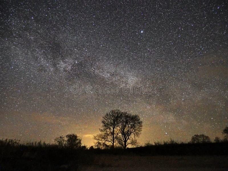 Estrelas e Via L?tea do c?u noturno observando, constela??o de Lyra imagens de stock royalty free