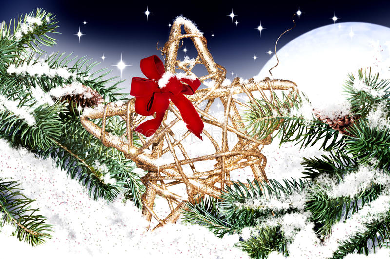 Estrella de la Navidad imagenes de archivo