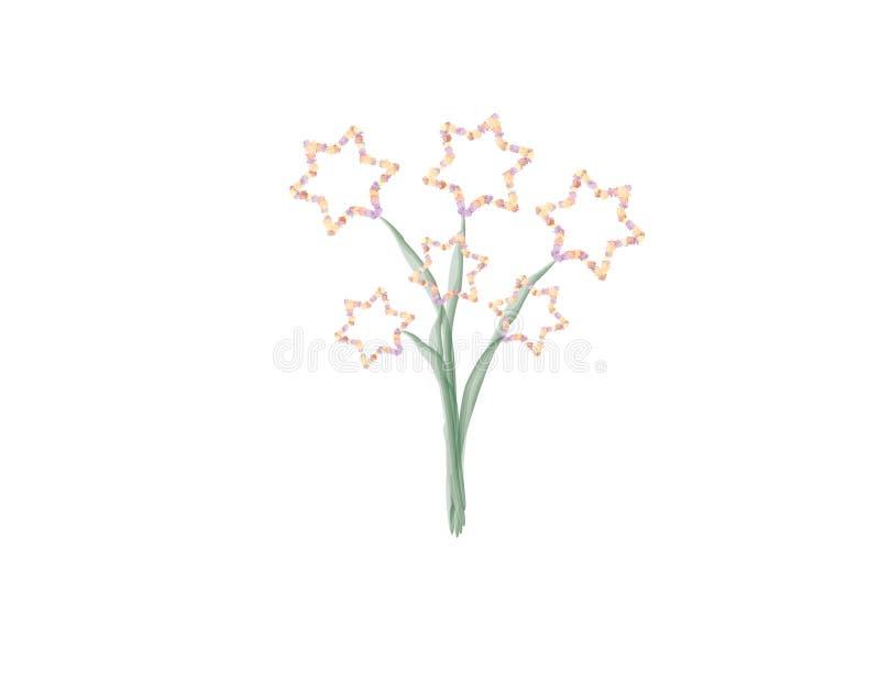 Estrella de los ejemplos de las flores de David en el fondo blanco stock de ilustración