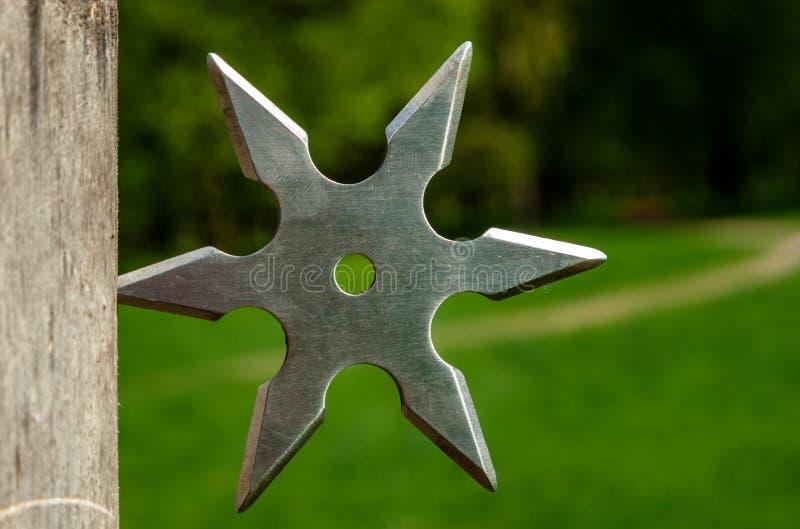 Estrella que lanza de Shuriken, arma japonesa tradicional del frío del ninja fotografía de archivo libre de regalías