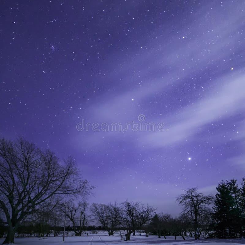 Estrellas, árboles y pista iluminados por la luna con las nubes imagenes de archivo