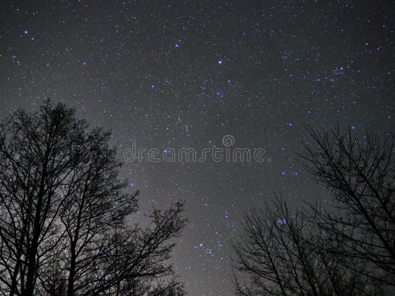 Estrellas auriga del cielo nocturno y constelaciones del tauro observando fotos de archivo libres de regalías