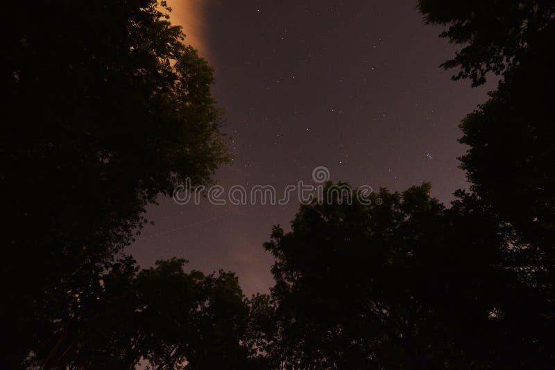 Estrellas, constelaciones, estrella del norte, estrella polar Pleiades Siete hermanas fotografía de archivo