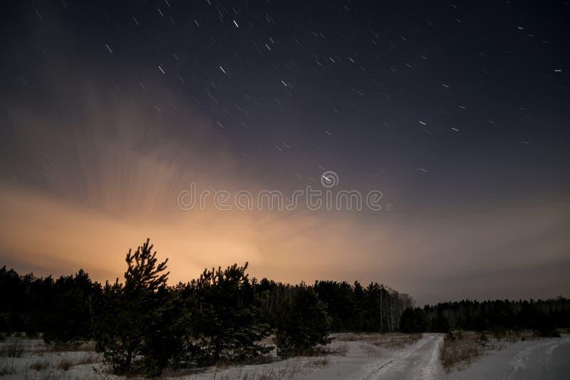 Estrellas de la nieve de la noche del camino forestal imágenes de archivo libres de regalías