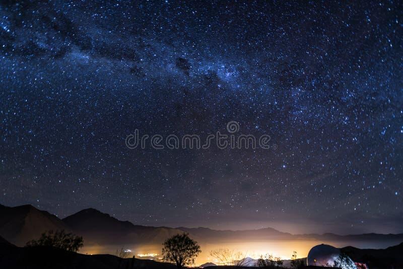 Estrellas de la vicuña, Chile foto de archivo libre de regalías