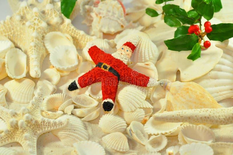 Estrellas de mar santa imágenes de archivo libres de regalías