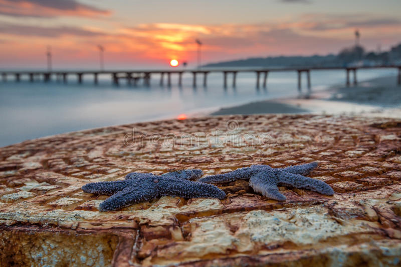 Estrellas de mar Tekirdag, Turquía de la puesta del sol fotografía de archivo libre de regalías