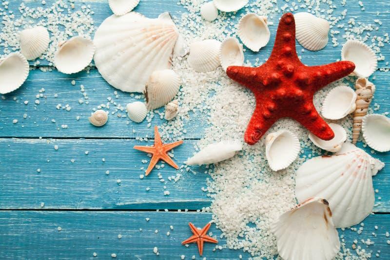 Estrellas de mar y conchas marinas rojas del fondo del verano en fondo de madera azul imagen de archivo libre de regalías