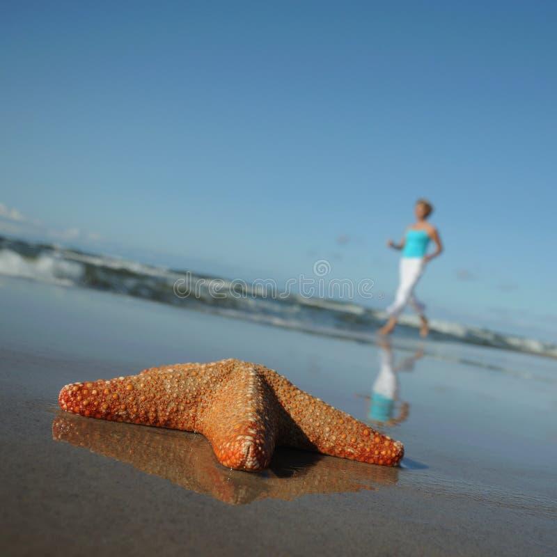 Estrellas de mar y mujer corriente en la playa imagen de archivo