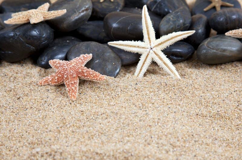 Estrellas de mar y rocas fotografía de archivo
