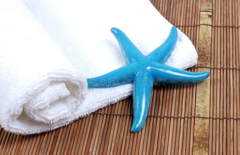 Estrellas de mar y toalla foto de archivo libre de regalías