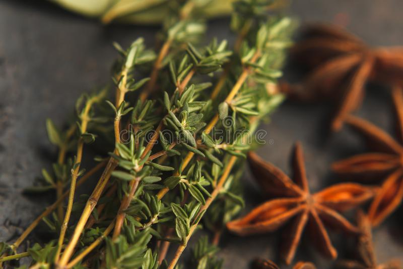 Estrellas del anís y dos puntillas de tomillo imagenes de archivo