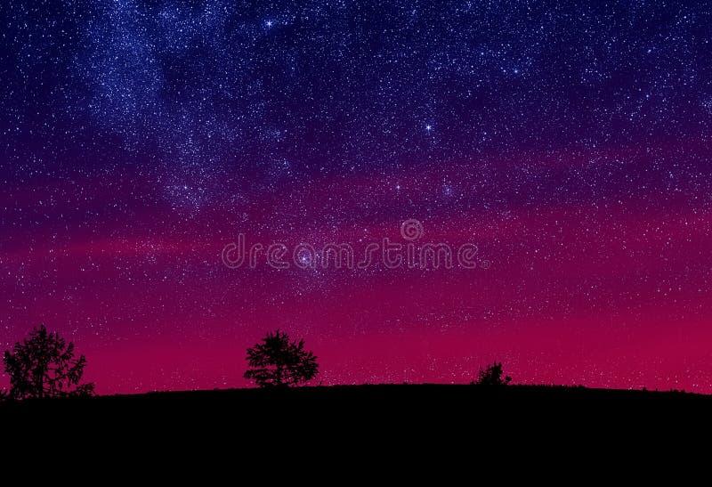 Estrellas del cielo de la mañana fotografía de archivo libre de regalías