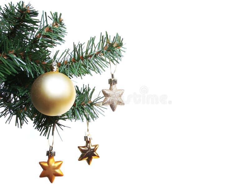 Estrellas del oro en la ramificación del árbol de navidad fotografía de archivo libre de regalías