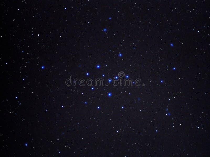 Estrellas del universo en cielo nocturno y racimo del verano fotografía de archivo libre de regalías