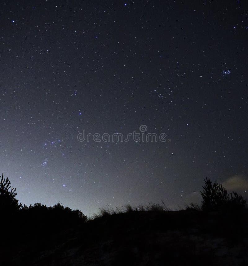 Estrellas Orión del cielo nocturno y constelaciones del tauro observando fotografía de archivo