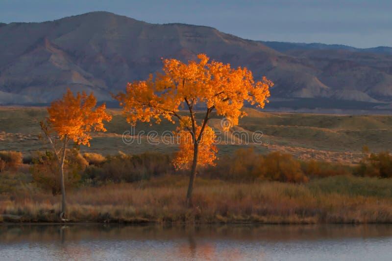 Estremità del ` s di ottobre nel lago immagini stock