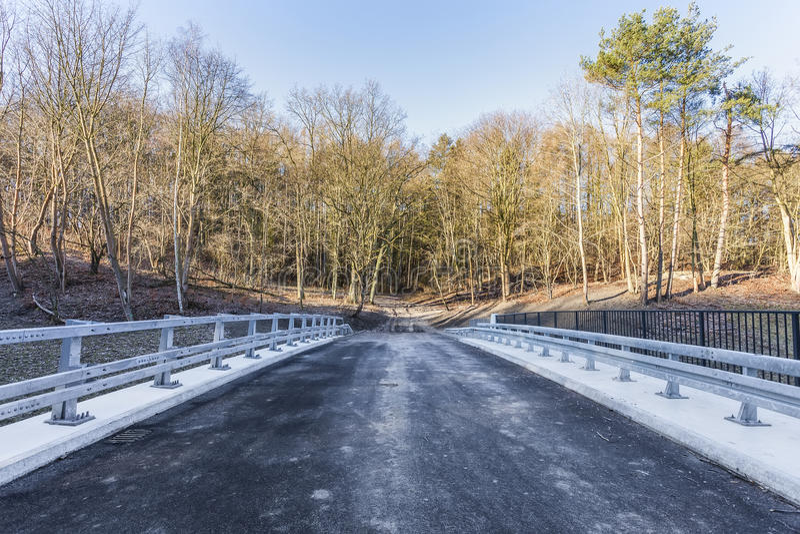 Estremità della strada e dell'entrata alla foresta fotografia stock libera da diritti