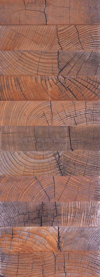 Estremit? di macro struttura di legno fotografia stock libera da diritti
