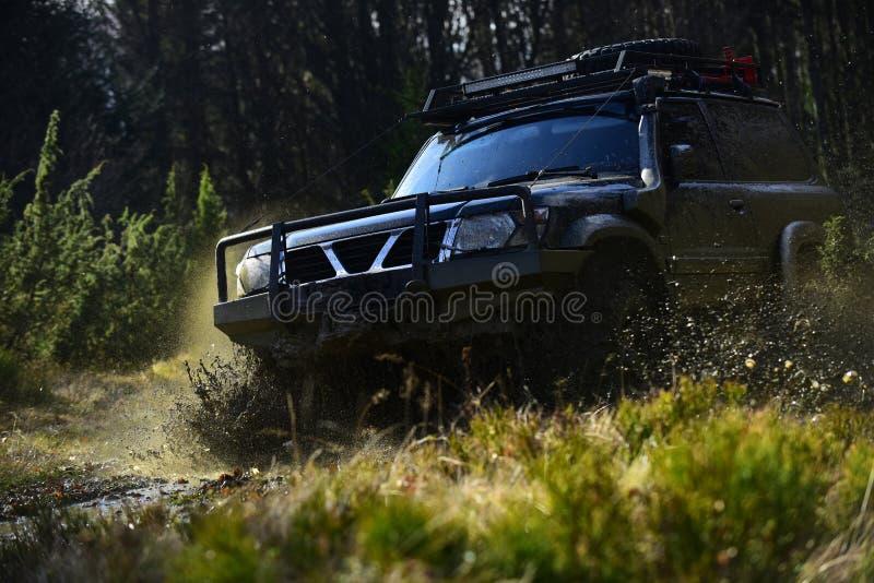Estremo, sfida e concetto del veicolo 4x4 Corsa fuori strada sul fondo della natura Corsa di automobile in foresta SUV o automobi fotografia stock
