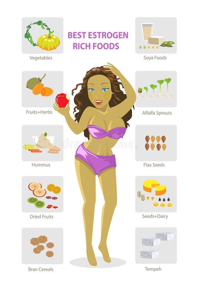 Estrogen foods. Foods rich in female hormones for women's health infographics. illustration vector illustration