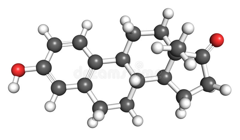 Estrone molecule. Estrone is a an estrogenic hormone secreted by the ovary and adipose tissue. Ball and stick model royalty free illustration
