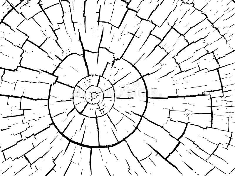 Estructura de grietas del fondo de madera del vector stock de ilustración