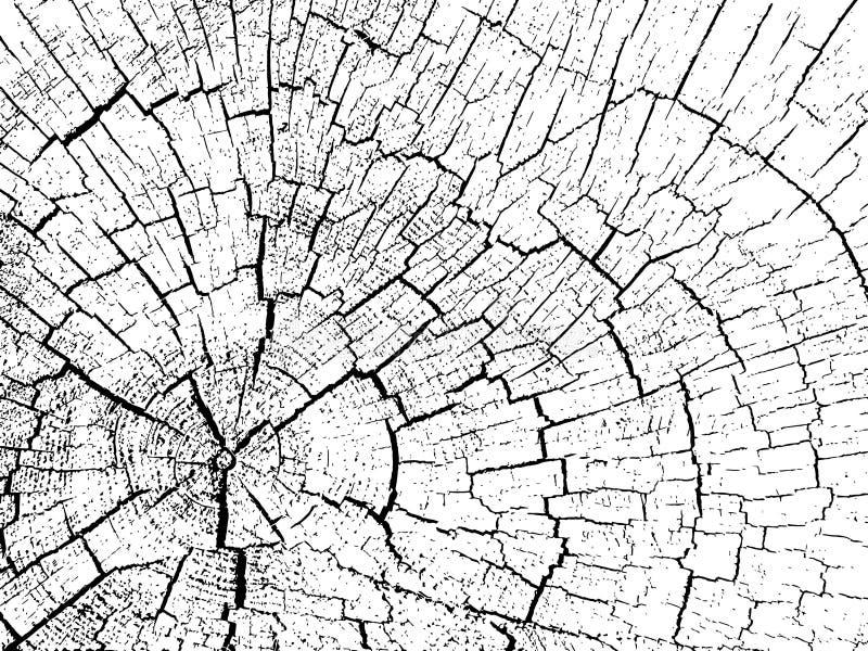 Estructura de grietas de la madera ilustración del vector