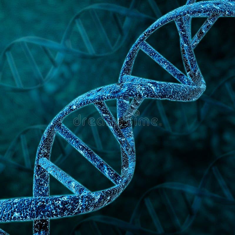 Estructura de hélice de la DNA ilustración del vector