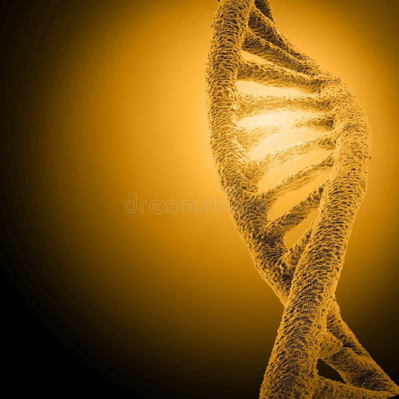 Estructura de la DNA del ejemplo de Digitaces stock de ilustración