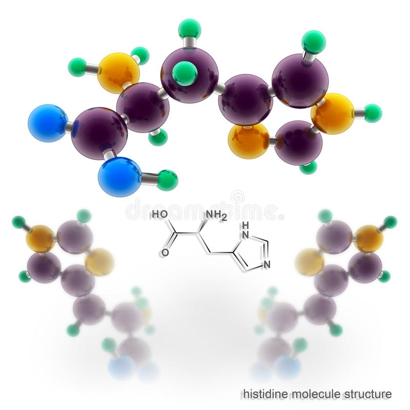 Estructura de la molécula de la histidina libre illustration