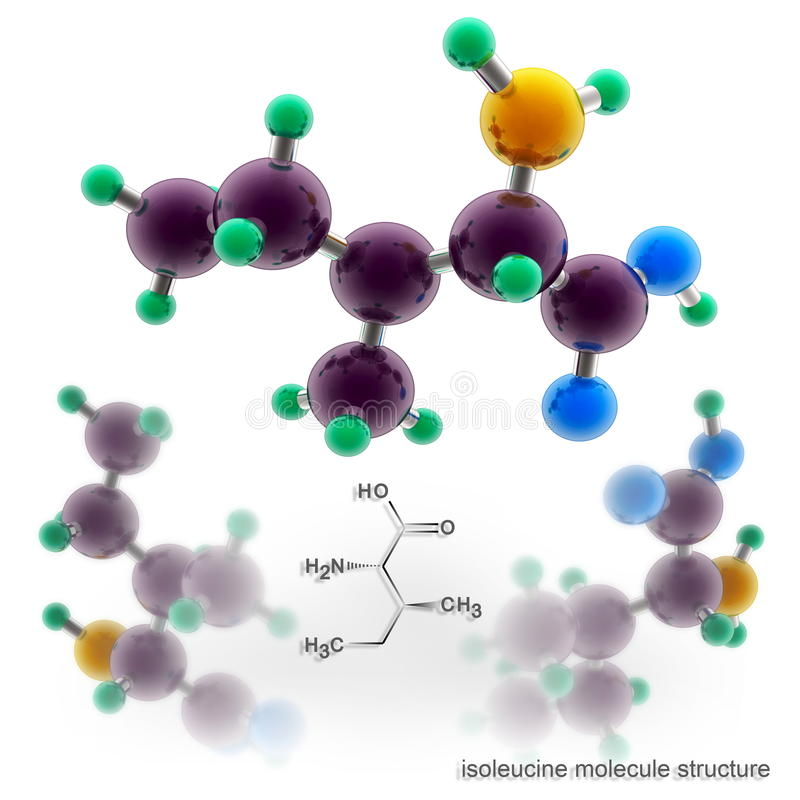 Estructura de la molécula de la isoleucina stock de ilustración