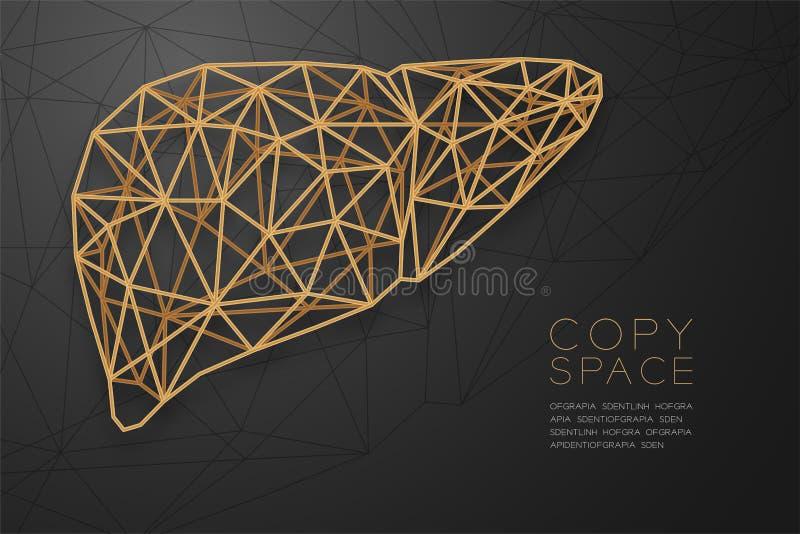 Estructura de oro del marco del polígono del wireframe de la forma del hígado, ejemplo del diseño de concepto del órgano de l stock de ilustración