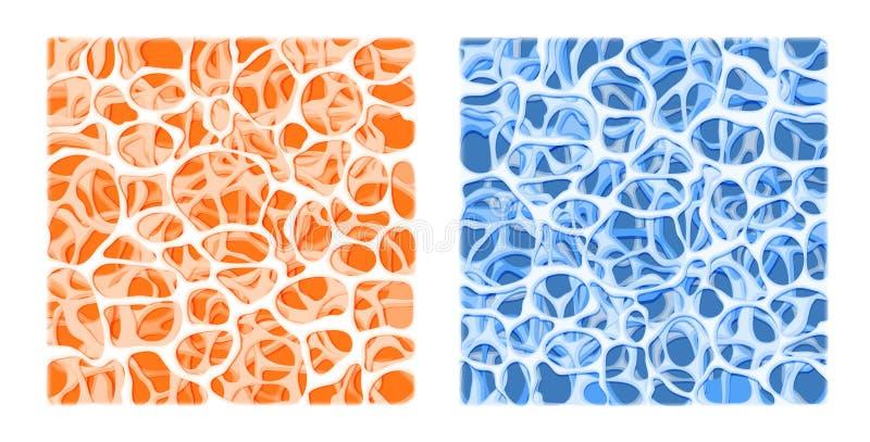 Estructura del hueso Fondo del vector libre illustration