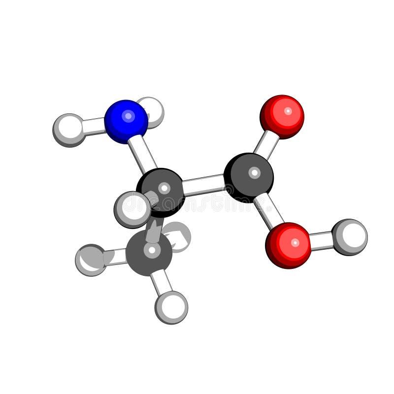 Estructura molecular de la alanina del aminoácido