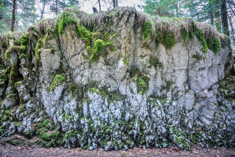 Estrutura abstrata da rocha perto da cachoeira do du doubs do saut foto de stock royalty free