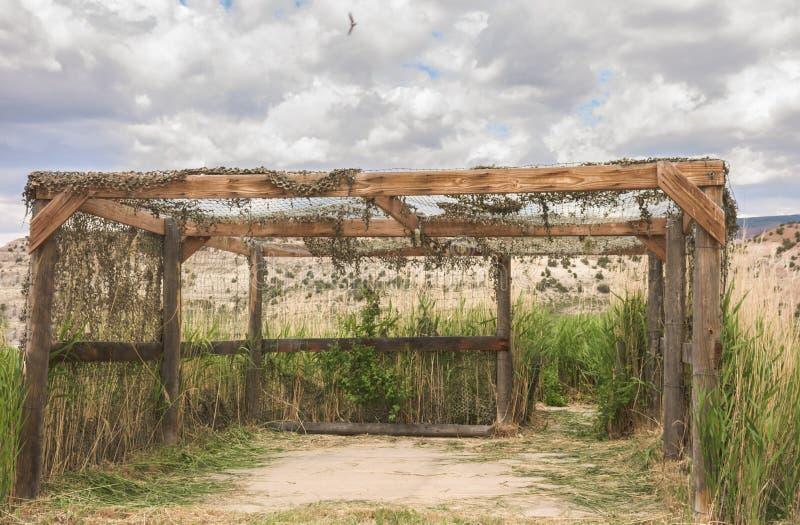 A estrutura cega do pássaro ao longo da movimentação dos animais selvagens nos marrons estaciona em Colorado imagens de stock