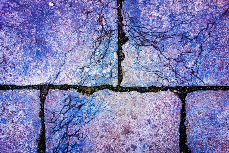 Estrutura cor-de-rosa e azul abstrata do pavimento fotos de stock