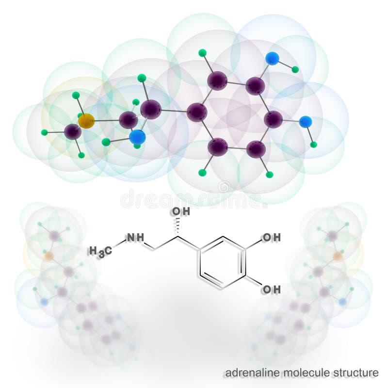 Estrutura da molécula da adrenalina ilustração do vetor