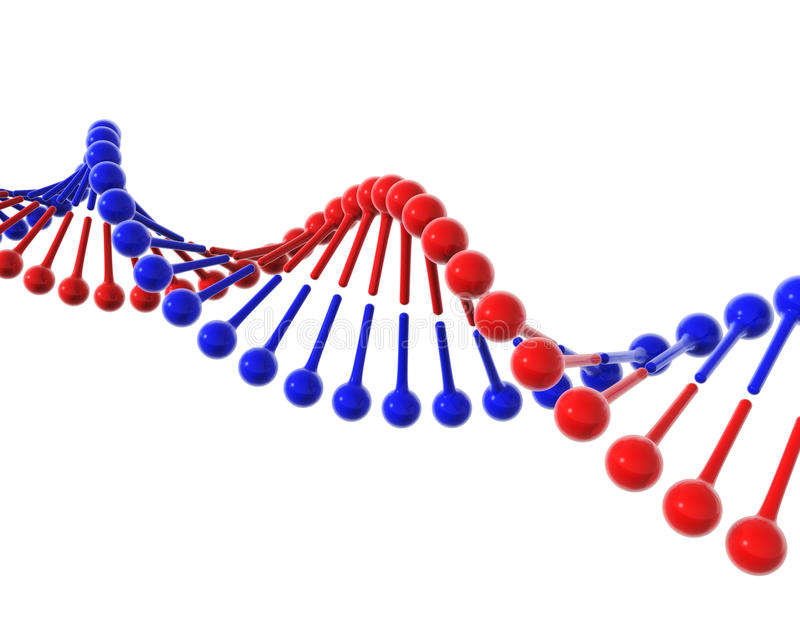 Estrutura do ADN ilustração do vetor