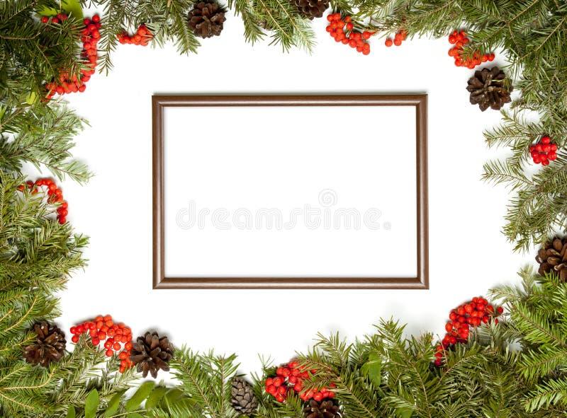 Estrutura do Natal com a árvore de abeto sempre-verde, cones, baga a do azevinho fotografia de stock