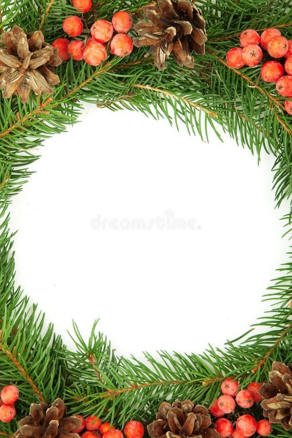 Estrutura do Natal com baga do azevinho fotografia de stock