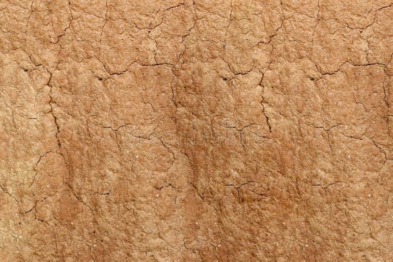 Estrutura do solo do monte da térmita, fundo fotos de stock royalty free
