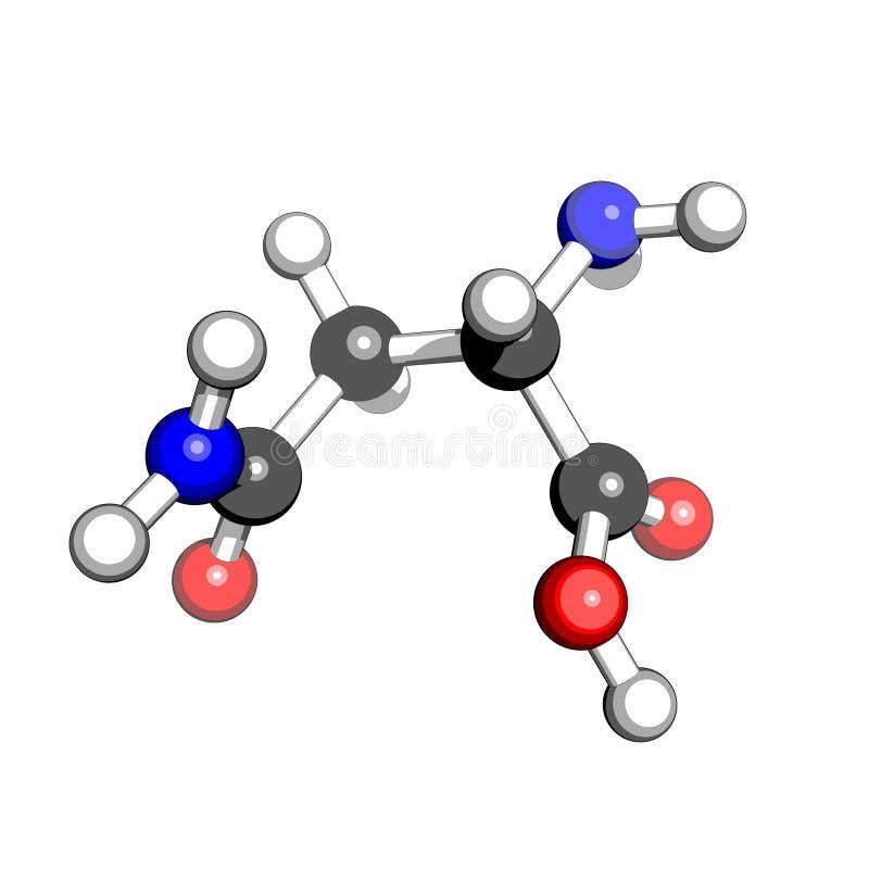 Estrutura molecular da asparagina do ácido aminado ilustração stock