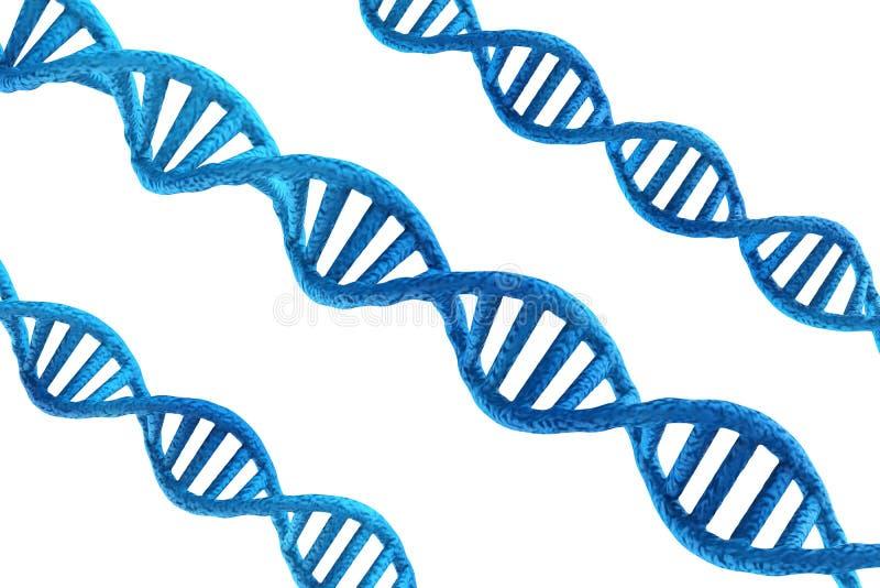 Estruturas azuis do ADN no fundo branco ilustração do vetor